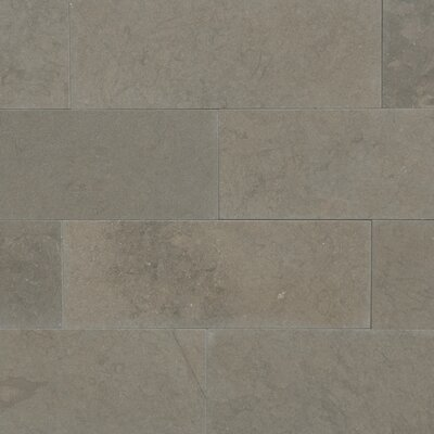 Maes 3 x 8 Limestone Subway Tile in Taupe