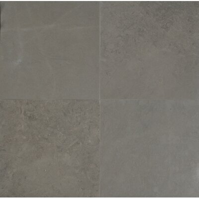 Maes 12 x 12 Limestone Field Tile in Taupe