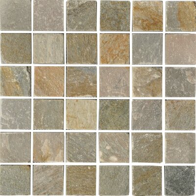 Century 2 x 2 Quartzite Stone Mosaic Tile in Natural