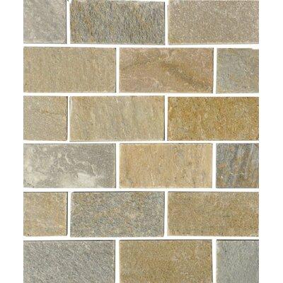 Century 2 x 4 Quartzite Stone Field Tile in Natural