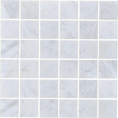Carrara 2 x 2 Honed Marble Subway Tile in White