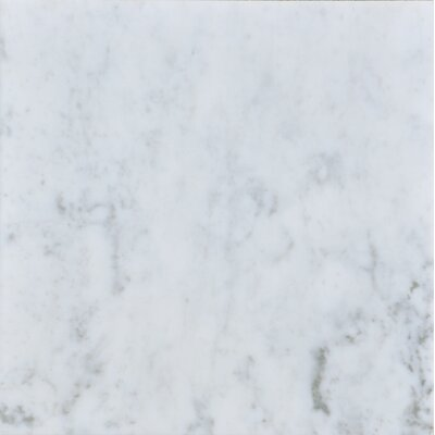 Carrara 12 x 12 Honed Marble Field Tile in White