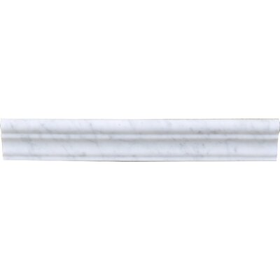 Carrara 12 Honed Marble Specialty Piece Tile Trim in White