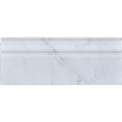 12 x 5 Marble Specialty Piece Tile Trim in White