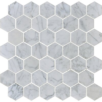 Carrara 2 x 2 Hexagon Polished Marble Mosaic Tile in White