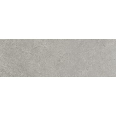 Beton 8 x 24 Porcelain Field Tile in Gris