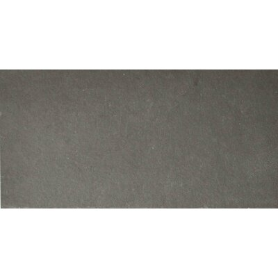 Pewter 6 x 12 Slate Field Tile in Gray