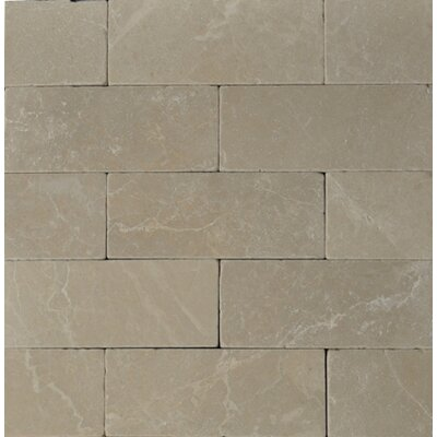 "8"" Marble Tile in Botticino"
