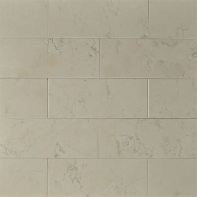"""8"""" x 3"""" Marble Tile in Nel Lusso"""