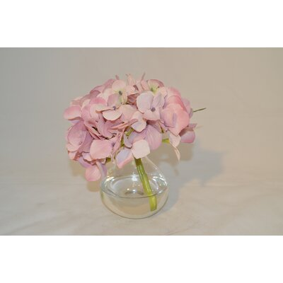 Hydrangea in a Bubble Color: Pink