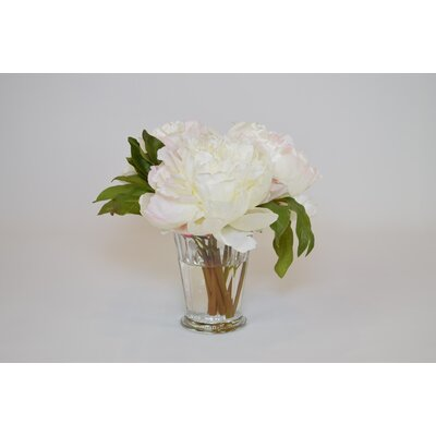 Peonies in Glass Mint Julep Cup Color: Cream 52246