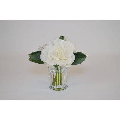 White Gardenia in Glass Mint Julep Cup 52347