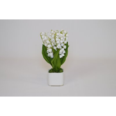 White Lily of The Valley in Square Vase