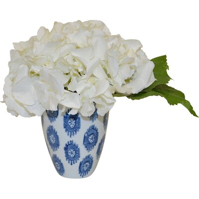 Hydrangea in Cup