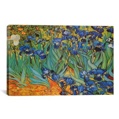 iCanvas - Van Gogh Irises 26 X 18 - 1316-1PC3-26x18