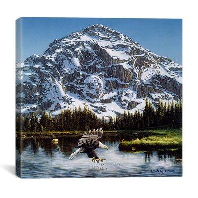 Mountain Majesty Canvas Wall Art By John Van Straalen Size