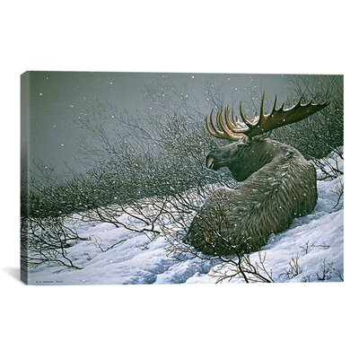 'Moose in the Brush' by Ron Parker Painting Print on Canvas Size: 12
