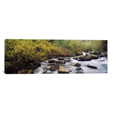 River Passing Through A Forest Inyo County California Photographic Print On Canvas Size 12 H X 36 W X 15 D image
