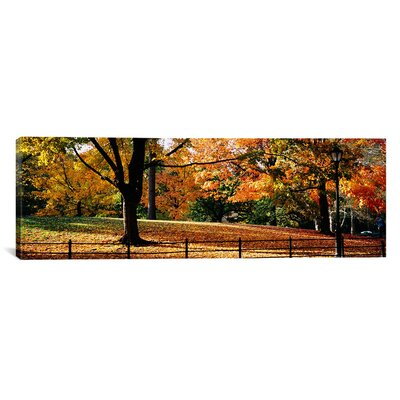 Panoramic Trees in a Forest, Central Park, Manhattan, New York City, New York Photographic Print on Canvas Size: 16