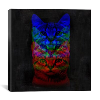 Hipster Cat #2 Print by Maximilian San Graphic Art on Canvas Size: 26