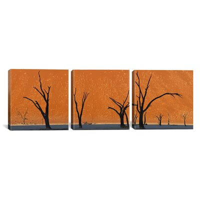 Photography Images Dead Trees Park Namibia 3 Piece on Wrapped Canvas Set Size: 12