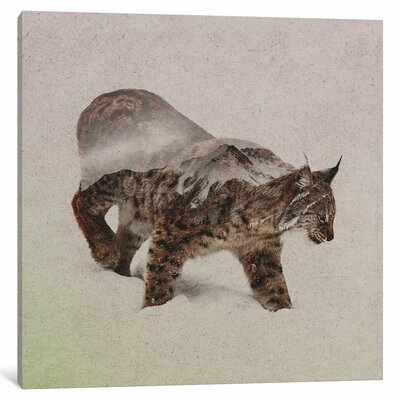 'Lynx III' by Andreas Lie Graphic Art on Wrapped Canvas Size: 37