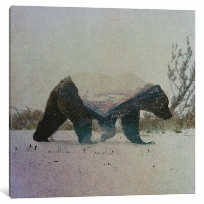 'Grizzly Bear' by Andreas Lie Graphic Art on Wrapped Canvas Size: 12