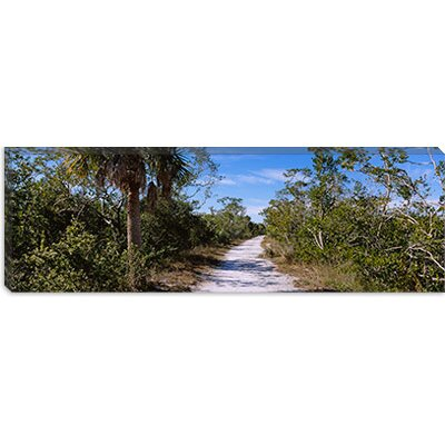iCanvasART J.N. Ding Darling National Wildlife Refuge, Indigo Trail, Sanibel Island, Florida Canvas Wall Art -Configuration:1 Panel, Size:2 at Sears.com