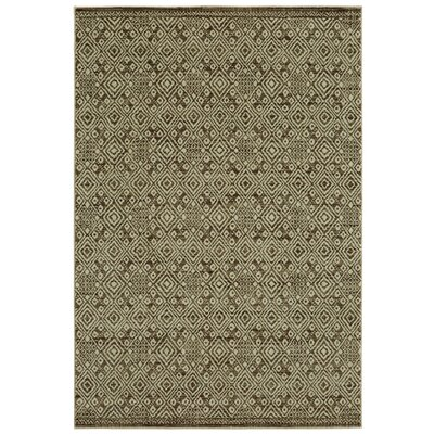 Mohawk Studio Mali Brown Area Rug Rug Size: Rectangle 8 x 10