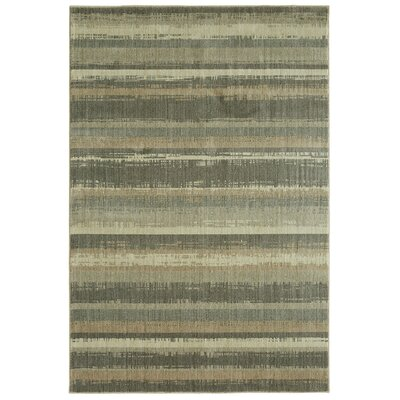 Dar Gray/Beige Area Rug Rug Size: Rectangle 53 x 710