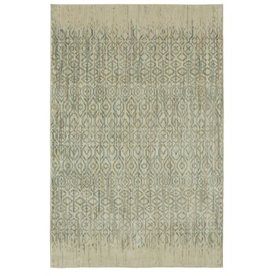 Mohawk Studio Santa Fe Beige/Aqua Area Rug Rug Size: Rectangle 53 x 710