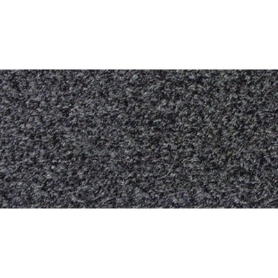 Value Series Charcoal Marine Indoor/Outdoor Area Rug Rug Size: 24 x 8