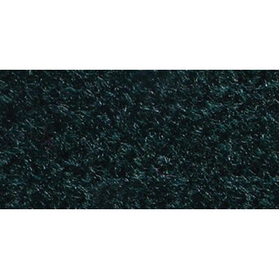Forest Aqua Turf Quality Carpet Indoor/Outdoor Area Rug Rug Size: 10 x 6