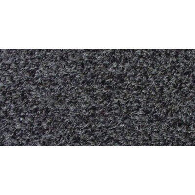 Bay Shore Premium Charcoal Indoor/Outdoor Area Rug Rug Size: Rectangle 24 x 8