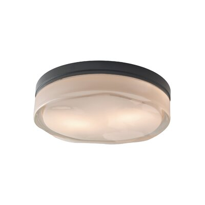 Fluid 2-Light LED Flush Mount Finish: Satin Nickel