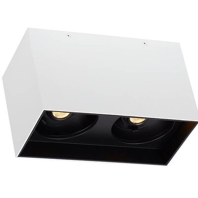 Pepin Dual LED Flush Mount Fixture Finish: Black, Shade Color: Matte White