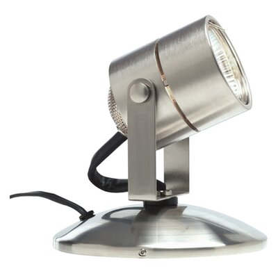 Lil Big Wonder 1-Light Display Light Lamp Base Finish: Satin Nickel