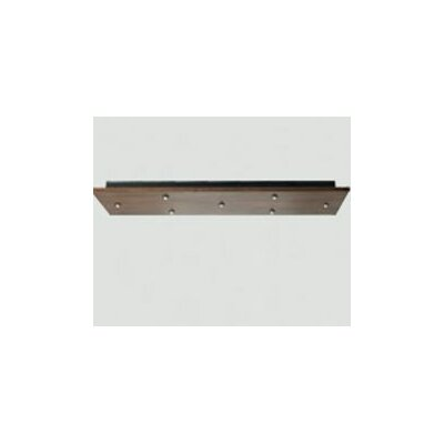 FreeJack 7-Port Rectangle Canopy Finish: Antique Bronze, Voltage: 120V IN / 12V OUT