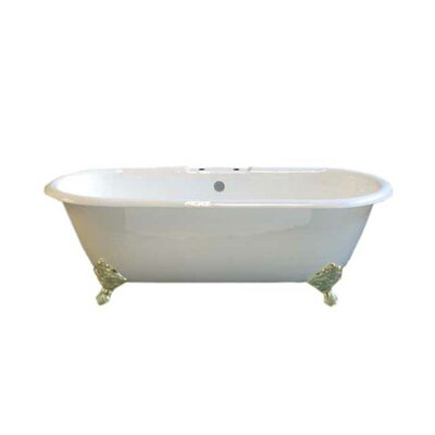 Cloud 67 x 31 Soaking Bathtub Leg Finish: Matte Nickel