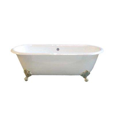 Cloud 67 x 31 Soaking Bathtub Leg Finish: Matte Nickel