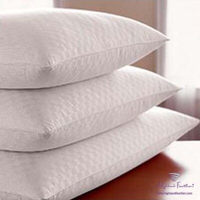 Damask Hutterite Goose - Level I 370T.C. Down Pillow Size: Standard