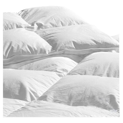 Midweight Down Comforter Size: Queen