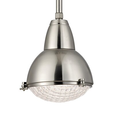 Ezequiel 1-Light Mini Pendant Finish: Satin Nickel