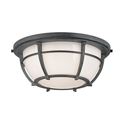Argie 2-Light Flush Mount Finish: Aged Zinc