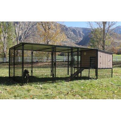 Castle Run Metal Yard Kennel Size: 8 x 16