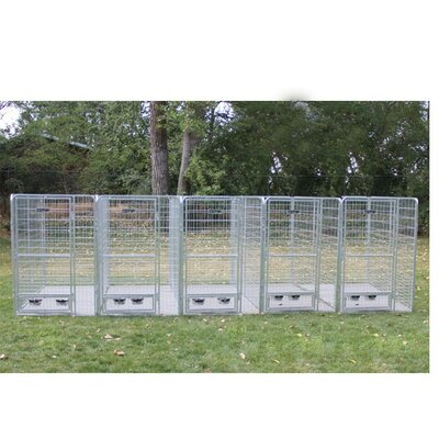 Avery 5 Dog Galvanized Steel Yard Kennel