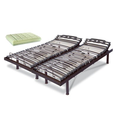 Premium Electric T Motion Adjustable Bed Size: 14.5 H x 76 W x 80 L