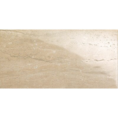 Travertini 12 x 24 Porcelain Field Tile in Polished Walnut