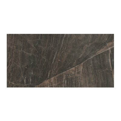 Anthology 12 x 24 Porcelain Field Tile in Polished Brown
