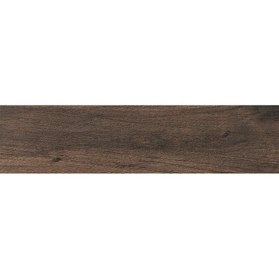 Urban 6 x 24 Porcelain Wood Tile in Dark